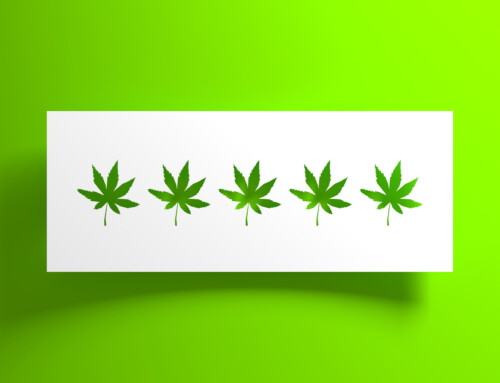 We Can All Learn From What Cannabis Shops Can't Do